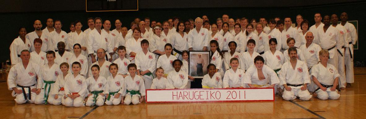 karate happy birthday